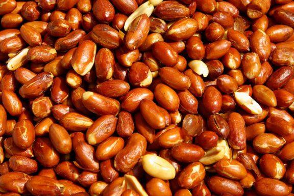 «Ένοχα» για αλλεργικές αντιδράσεις τα καβουρδισμένα φιστίκια