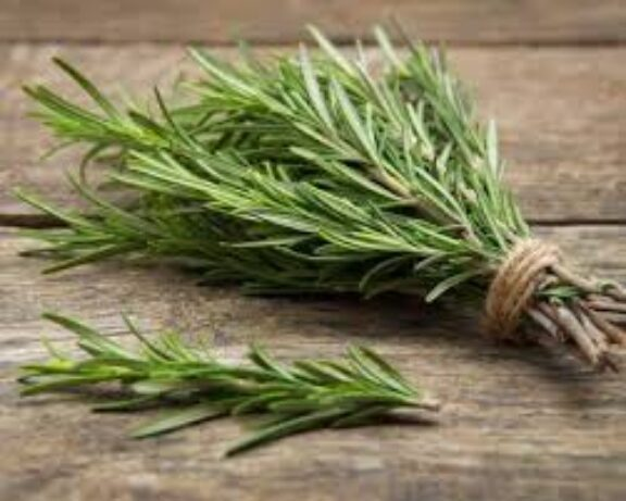 Δενδρολίβανο: το βότανο που ενισχύει τη μνήμη κατά 75%