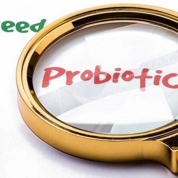 Τι είναι τα προβιοτικά και πώς συμβάλλουν στην απώλεια βάρους