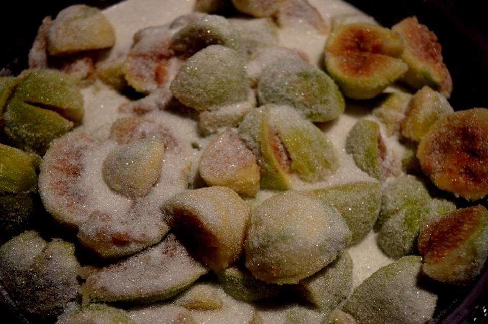 Σύκο: Το απόλυτο καλοκαιρινό φρούτο, του Γιώργου Μαυροειδή
