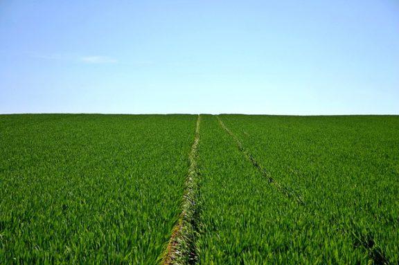 Βράβευση έργων αγροτικής ανάπτυξης