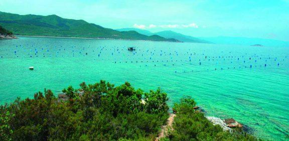 Στη Χαλκιδική για φρέσκα μύδια και… ψάρια του βουνού