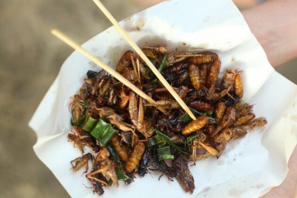 silkworm beetle grasshopper mixture roasted with onion