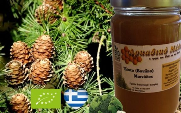 Καταναλώστε άφθονο Ελληνικό μέλι, βρέθηκαν νέα συστατικά που γιατρεύουν τα πάντα!