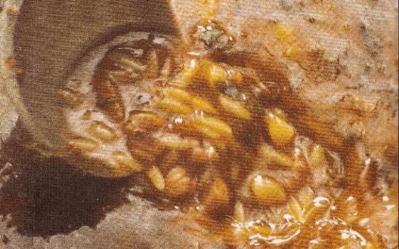 Χταποδόσουπα νηστίσιμη, του Πατέρα Επιφάνειου