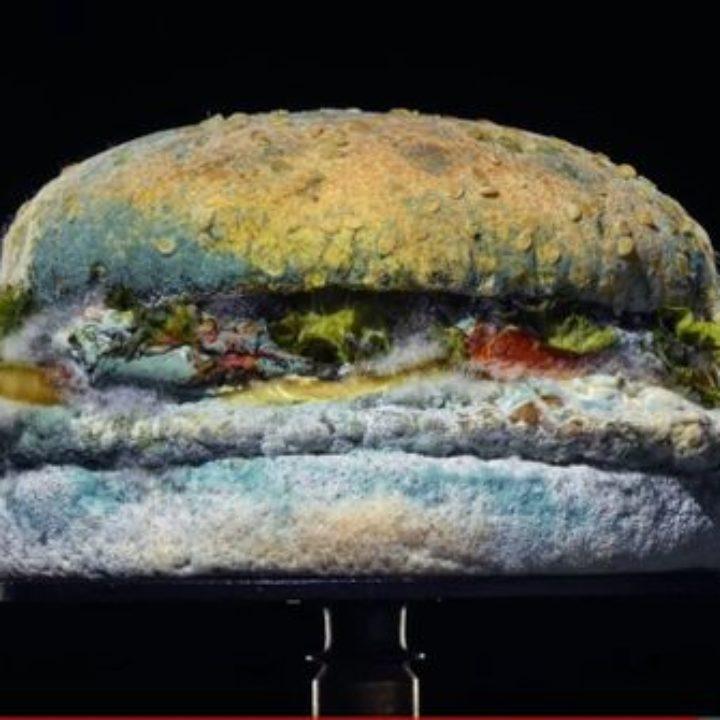 Το νέο «μουχλιασμένο» μπέργκερ της Burger King πιο λαχταριστό από ποτέ